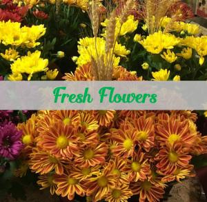 Russell Flowers - Fresh Flowers